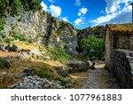 a mountain goat lies on the... | Shutterstock . vector #1077961883