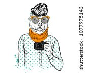 Hipster Dog With Human Body An...