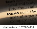 fauna word in a dictionary.... | Shutterstock . vector #1078004414