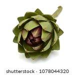 fresh artichoke isolated on... | Shutterstock . vector #1078044320