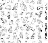 owls variations hand drawn... | Shutterstock . vector #1078249373