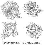 black and white line... | Shutterstock .eps vector #1078322063