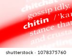 Small photo of chitin word in a dictionary. chitin concept