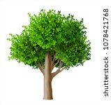 realistic vector tree with... | Shutterstock .eps vector #1078421768