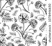 graphic decorative seamless...   Shutterstock .eps vector #1078446650