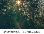 bright sun is shining through... | Shutterstock . vector #1078623338