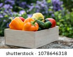 wooden box with fresh... | Shutterstock . vector #1078646318