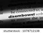 Small photo of disembowel word in a dictionary. disembowel concept