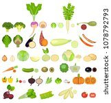 a set of icons of vegetables of ... | Shutterstock . vector #1078792793
