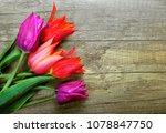spring tulips flower on wooden... | Shutterstock . vector #1078847750