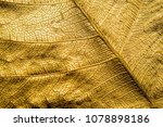 close up patterns on gold leaf... | Shutterstock . vector #1078898186
