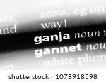 Small photo of ganja word in a dictionary. ganja concept