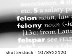 felony word in a dictionary....
