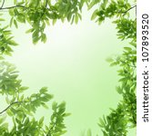 Nature Green Leaf Frame...