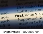 Small photo of fact word in a dictionary. fact concept
