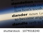 Small photo of dander word in a dictionary. dander concept