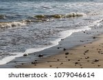 waves lapping a sand and ... | Shutterstock . vector #1079046614