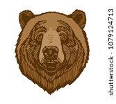 brown bear head portrait vector ... | Shutterstock .eps vector #1079124713
