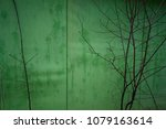 tree branches on the background ... | Shutterstock . vector #1079163614