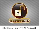 gold emblem with open lock... | Shutterstock .eps vector #1079249678