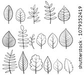 vector doodle leaves of... | Shutterstock .eps vector #1079352419