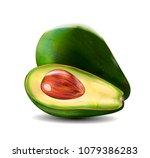 vector realistic fresh fruit... | Shutterstock .eps vector #1079386283
