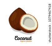 coconut in cartoon style. nut... | Shutterstock .eps vector #1079467418