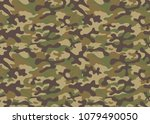 texture military camouflage... | Shutterstock .eps vector #1079490050