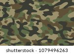 texture military camouflage...   Shutterstock .eps vector #1079496263