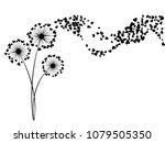 black on white vector dandelion ...