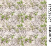 Small photo of Abstract seamless pattern for designers with peaces of lime herb and dirt loam