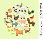 agriculture animals color flat... | Shutterstock .eps vector #1079626940