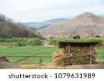 mountain view with rice field... | Shutterstock . vector #1079631989