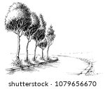 trees alley in the park... | Shutterstock .eps vector #1079656670