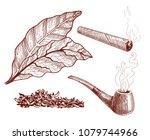 tobacco design elements set ... | Shutterstock .eps vector #1079744966