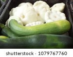 marrows of different types in... | Shutterstock . vector #1079767760