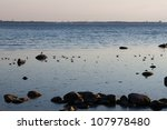 Sea birds on the rocks in baltic sea with sailing boat - stock photo