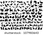 Stock vector animals 107983643