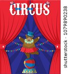 bear show behind circus curtain ... | Shutterstock .eps vector #1079890238