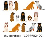 cute dogs border set | Shutterstock .eps vector #1079902400