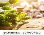 oil bottle. green flowers.... | Shutterstock . vector #1079907410