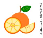 an orange with half and slice... | Shutterstock .eps vector #1079943716