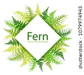 fern frond tropical leaves... | Shutterstock .eps vector #1079974943