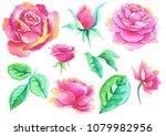 ink  watercolor drawing   roses | Shutterstock . vector #1079982956