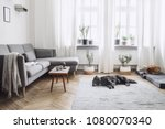 stylish interior of living room ... | Shutterstock . vector #1080070340