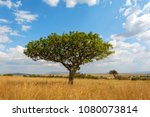 beautiful landscape with nobody ...   Shutterstock . vector #1080073814