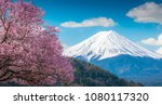 mountain fuji and pink cherry... | Shutterstock . vector #1080117320