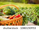 mixed organic vegetables and... | Shutterstock . vector #1080150953