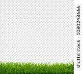 grass border transparent... | Shutterstock .eps vector #1080248666