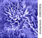 Vibrant Purple Flower Photo...